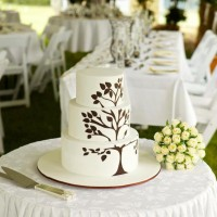 Cake Table with Flounce